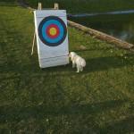 První soutěž - lukostřelba (064Čáry2012©D.Koutník)