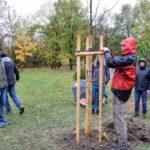 20181028-113155-ZdenekMikula-135
