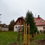 20181028-113327-ZdenekMikula-143
